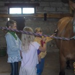 Hobuste eest hoolitsemas