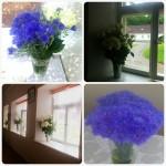 Imeilusad pulma lilled!