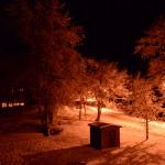 Esimene lumi 2015