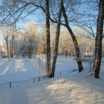 Rogosi mõisa park